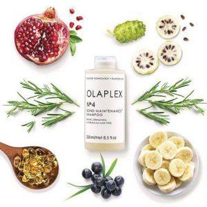 Olaplex shampoo Award Winning Hair salon serving Poole & Bournemouth