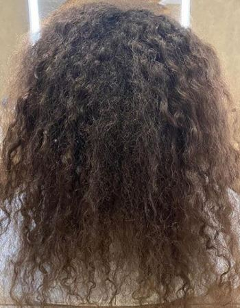 Frizz-Free-Hair-1